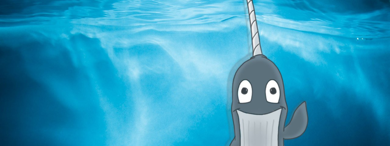 Wally Narwhal