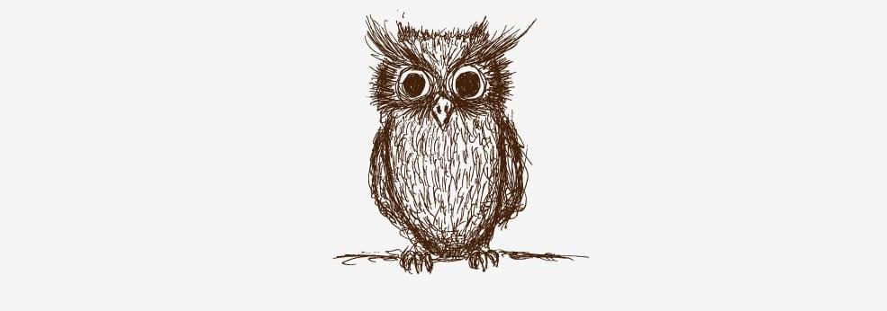 Workplace Wisdom Owl