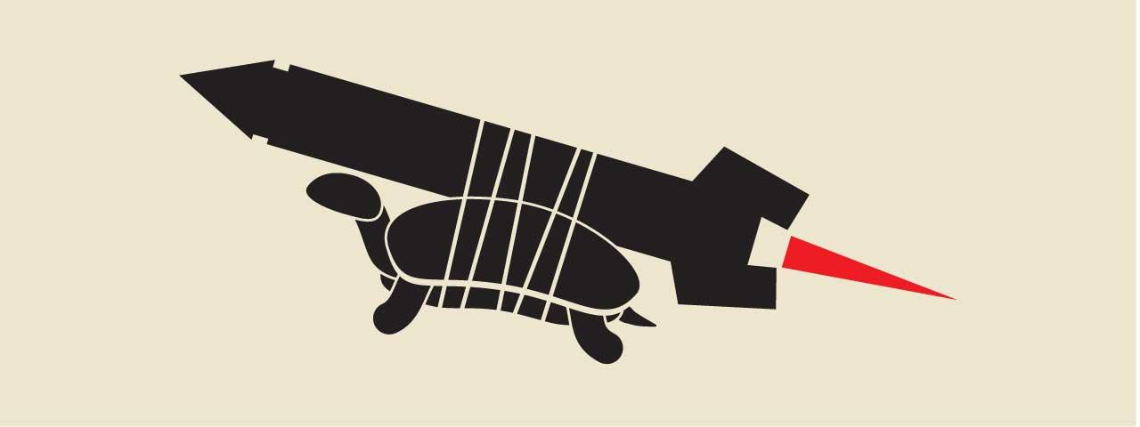 Turtle on Rocket