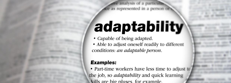 adaptability in marketing