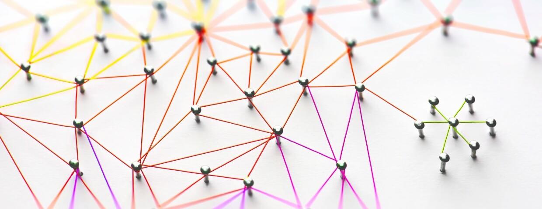 link network