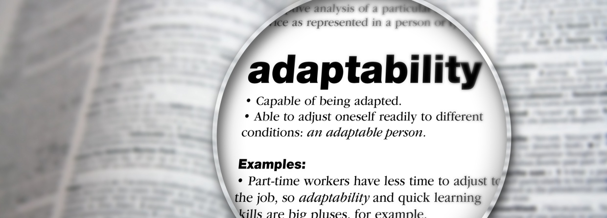 Adaptations to Make as a Marketer: Takeaways from Digital Summit